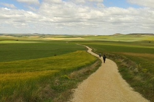 On The way, Camino de Santiago